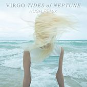 Tides of Neptune (Hush Remix) by *V*I*R*G*O*