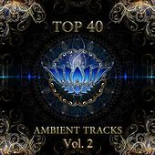 Top 40 Ambient Tracks, Vol. 2 by Various Artists