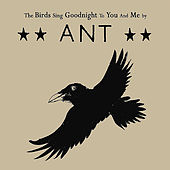 The Birds Sing Goodnight to You and Me by Ant (comedy)