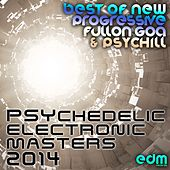 33 Psychedelic Electronic Masters 2014 - Best of New Progressive Fullon Goa & Psychill by Various Artists