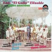 Con Banda Sinaloense by Lalo El Gallo Elizalde