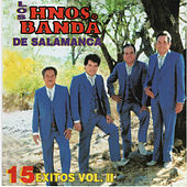 15 Exitos, Vol. 2 by Los Hermanos Banda De Salamanca
