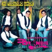 Mi Verdadero Amor by Grupo Bryndis