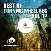 Best of Turning Wheel Rec, Vol. 17 by Various Artists