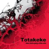 Me.Tem.Psy.Cho.Sis by Totakeke