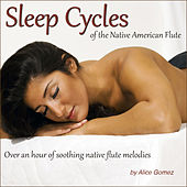 Sleep Cycles of the Native American Flute (Over an Hour of Soothing Native Flute Melodies) by Alice Gomez