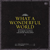 What a Wonderful World by Booker T.