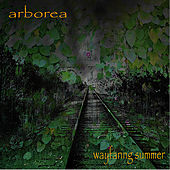 Wayfaring Summer by Arborea