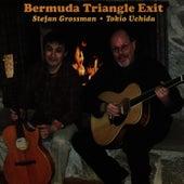 Bermuda Triangle Exit by Stefan Grossman