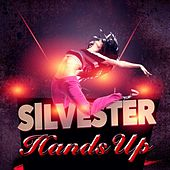 Silvester Hands Up by Various Artists