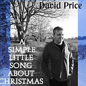 A Simple Little Song About Christmas by David Price