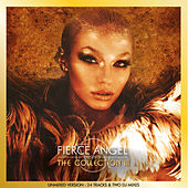 Fierce Angel Presents the Collection III (DJ Edition Unmixed) von Various Artists
