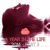 A Year in the Life of Heavenly Bodies 2014, Pt. 3 by Various Artists