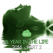 A Year in the Life of Heavenly Bodies 2014, Pt. 2 by Various Artists