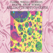 Brilliant Trumpet Concertos by Various Artists