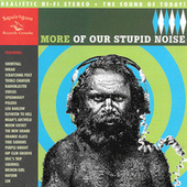 More Of Our Stupid Noise by Various Artists