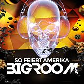 So Feiert Amerika Bigroom by Various Artists