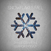 Snowflakes Fall by Eleanor McEvoy
