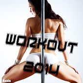 Workout 2014 by Various Artists