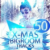 50 X-Mas Bigroom Tracks by Various Artists