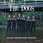 Black Chameleon Prayer by The Dogs