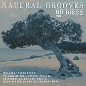 Natural Grooves - The Finest Selection of Nu Disco, Vol. 1 by Various Artists