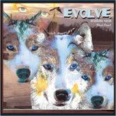 Evolve (Instrumental) by Sheri Grant