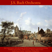 Bach: Violin Concerto: Air On the G String - The Well -Tempered Clavier - Jesu, Joy of Man's Desiring / Pachelbel's Canon in D Major / Vivaldi: Concertos / Albinoni: Adagio in G Minor / Paradisi: Toccata / Fur Elise / Turkish March / Wedding March by Johann Sebastian Bach
