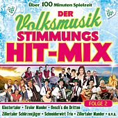Der Volksmusik Stimmungs Hit-Mix - Folge 2 by Various Artists