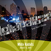 Live at Lollapalooza 2007: White Rabbits by White Rabbits
