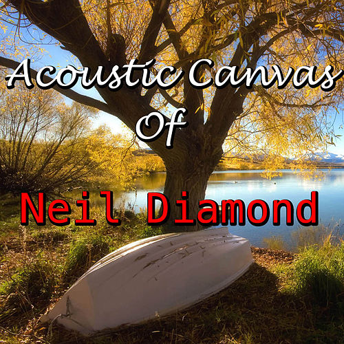 Acoustic Canvas Tributed To Neil Diamond by Wildlife