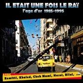 Il était une fois le raï, l'âge d'or 1985-1995 by Various Artists