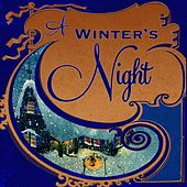A Winter's Night, Vol. 1 von Various Artists
