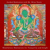 Mindfulness Meditations for Tranquility and Insight by Guided Meditation