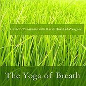 The Yoga of Breath: Guided Pranayama With David Harshada Wagner by Music For Meditation