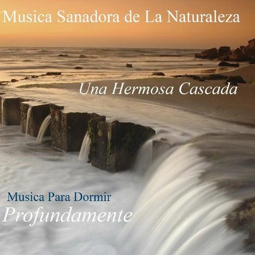 Una Hermosa Cascada - Sonidos Sanadores De La Naturaleza by Musica Para Dormir Profundamente