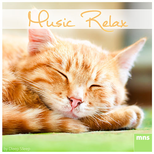 Music Relax by Study Music