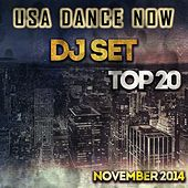 USA Dance Now DJ Set Top 20 November 2014 (House and Deep House Essential Selection for DJ) by Various Artists