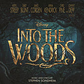 Into the Woods by Various Artists