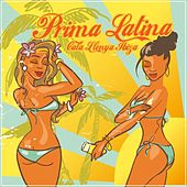 Prima Latina Cala Llenya Ibiza by Various Artists