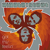 Got This Feelin' by Riddle of Steel