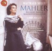 Gustav Mahler: Orchesterlieder by Waltraud Meier