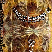 Parvati Records Digital Masala, Vol. 2 by Various Artists