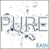Pure Rain - The Calming Sound of RAIN by Various Artists