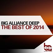 The Best Of Big Alliance Deep 2014 by Various Artists