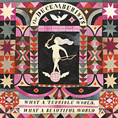 The Wrong Year by The Decemberists