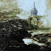 Primeval Nebula by Aglaia