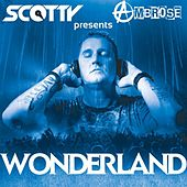 Wonderland by Scotty