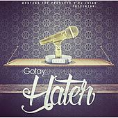 Hater by Gotay