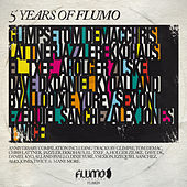 Flumo 020: 5 Years of Flumo by Various Artists